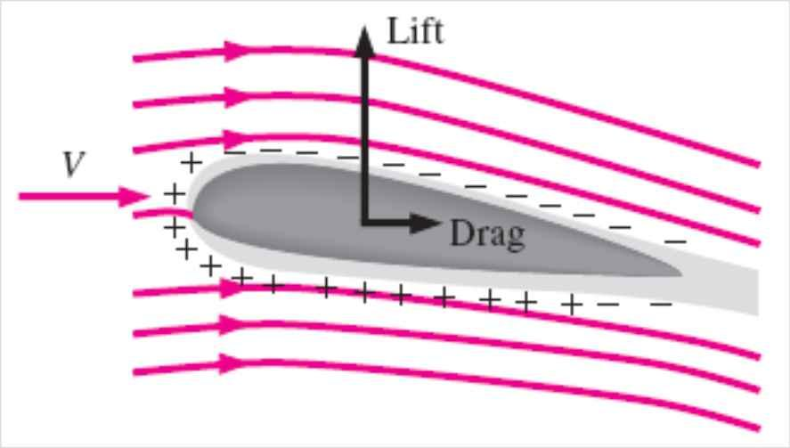 Airplane wings are shaped and positioned to generate sufficient lift during flight while keeping drag at a minimum.