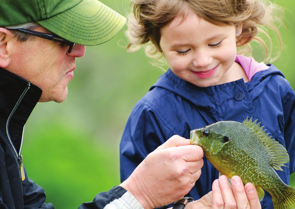However, while nationwide angling numbers have risen, Illinois has experienced a decrease in the number of fishing license sales, as well as angling participants.