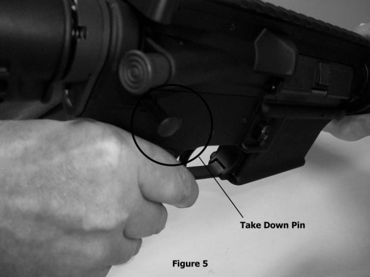 Maintaining your AM Model Firearm Rifle Disassembly WARNING: BEFORE DISASSEMBLY, REMOVE THE MAGAZINE, CLEAR THE CHAMBER AND MAKE SURE THE FIREARM IS IN THE SAFE POSITION.