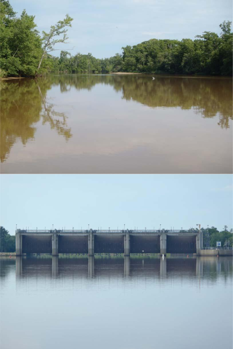 JOURNAL OF FRESHWATER ECOLOGY 149 Figure 1. Top photo Neches River channel upstream from the saltwater barrier; bottom photo saltwater barrier on Lower Neches with gates in open position.