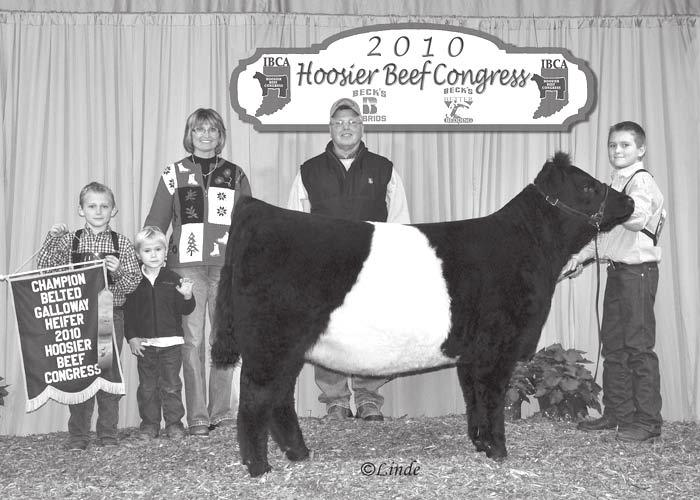 , with this Champion Belted Galloway Heifer at the Hoosier Beef Congress.