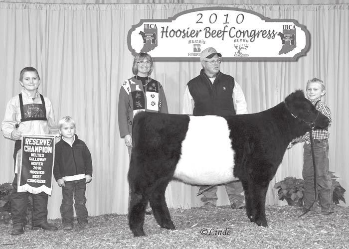 Belted Galloway exhibitors included Angela, Alexandra, and Doug Abney, Red Barn Farms, Bargersville, IN; Cayde and Cordon Selke, Frankfort, IN.