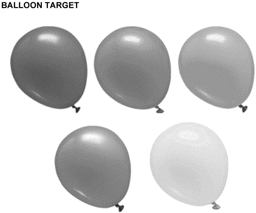 Attachment E to EO M406.01 Figure E-1 Balloon Target Note.