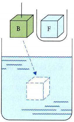Buoyancy: Archimedes Principle Step 1: Remove F from the beaker and place it in a small container, leaving an empty bubble of the same size in the beaker.