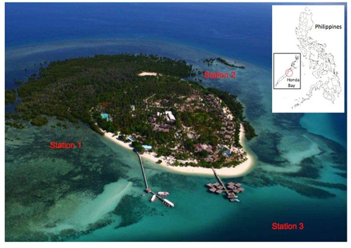 22 Figure 1. Aerial photograph of Arreceffi Island in Honda Bay, Palawan, Philippines showing the study s stations.