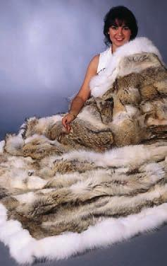46 Red & Grey Fox Queen A. 32 Pelts, $725 Coyote & White Fox King B.