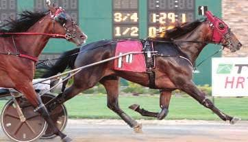 that breeders seek. He is a full brother to World Champion PIZZA DOLCE 3, 1:52.4 ($668,824), the dam of MISS PARIS 3, 1:54.