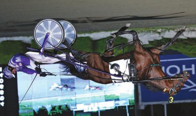 ..winner of a North America Cup elim in his record 1:48.4 and finished second in the $920,000 North America Cup Final. He also finished third in the Meadowlands Pace Final, timed in 1:47.1. Tellitlikeitis is by Well Said and from the millionaire racemare Kikikatie p,3,1:50.