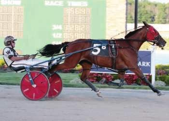 1f- 16 ($1,109,407) UNDEFEATED 2015 Indiana Sires Stakes Champion - 3 Year Old Colt Trot At 4, he established a WORLD RECORD for Aged Geldings on a 5/8 mile track!