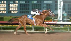 2012 will be eligible for the 2015 $200,000 guaranteed Florida Bred Futurity Tallahassee, Florida 850.386.3619 www.