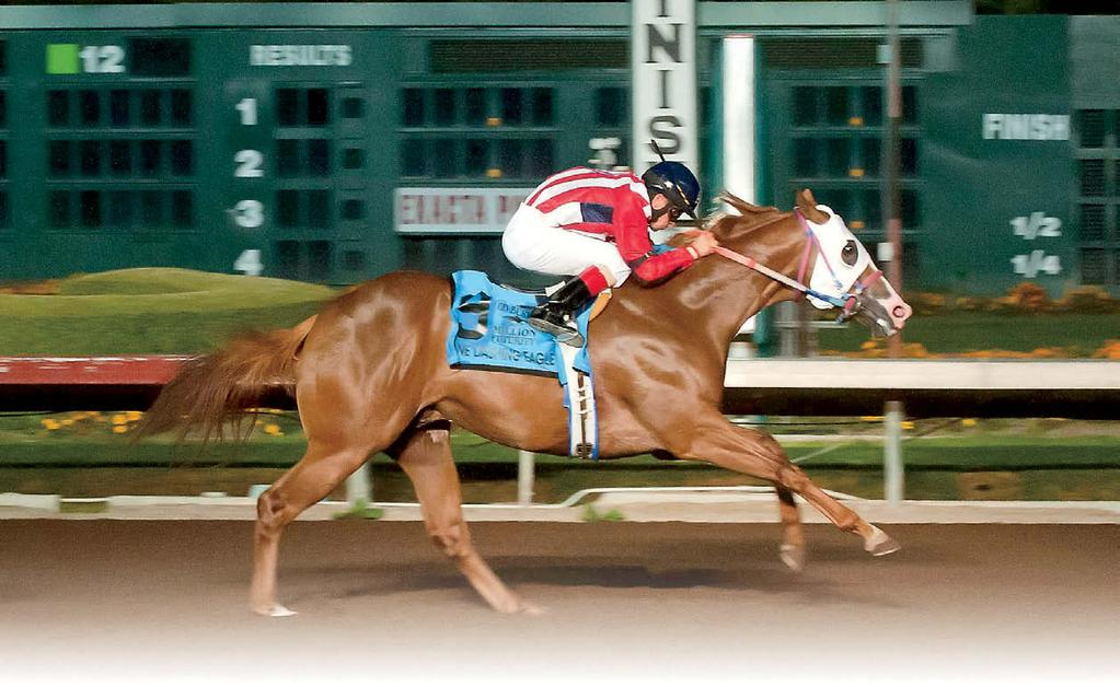One Dashing Eagle romps in the Ed Burke Million Futurity. Click to watch Ed Burke Million Futurity.