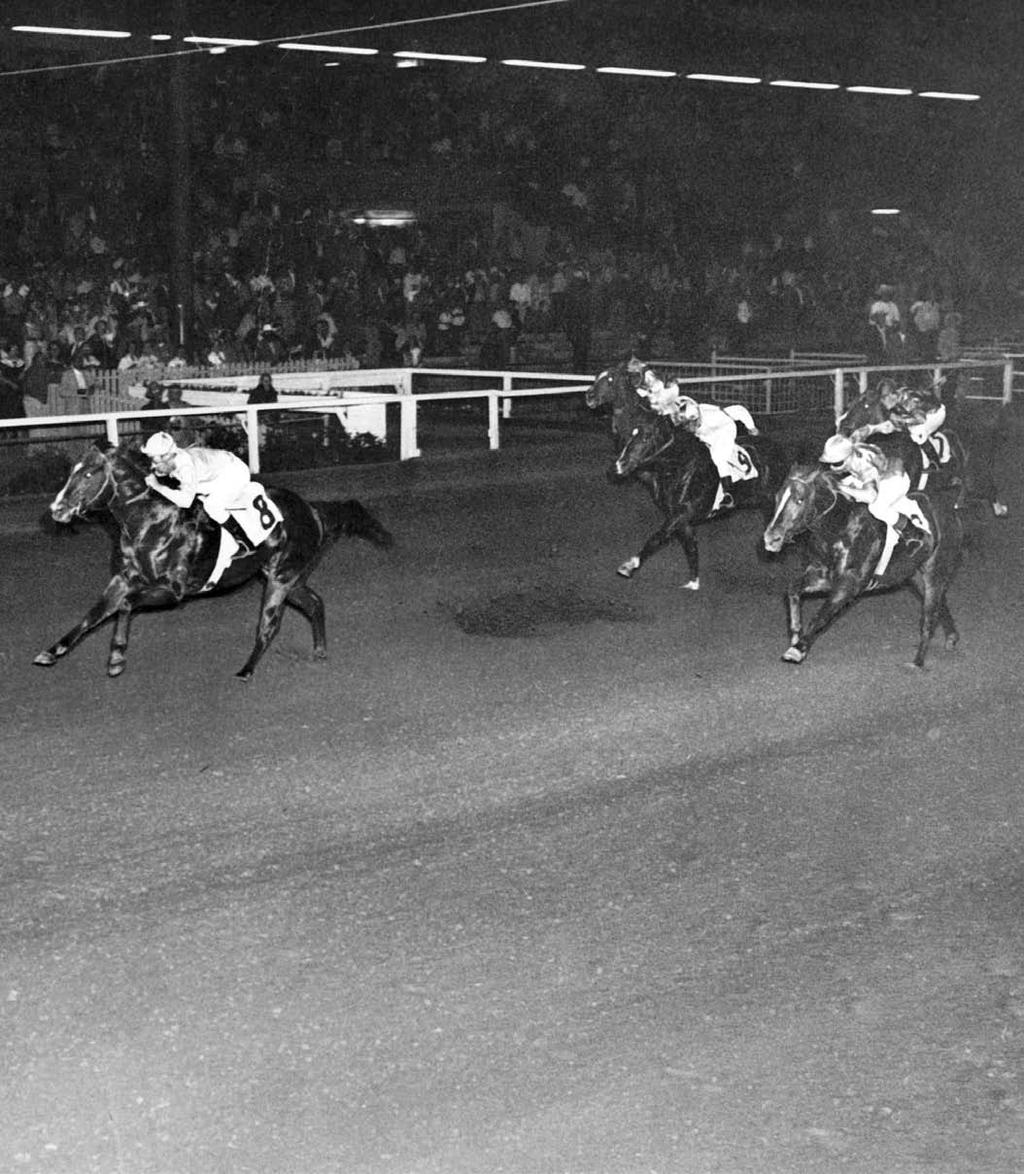 Mr Bar None wins the 1957 Kansas Futurity. AQHA FILE PHOTO Dduring the late 1950s, the aptly named horse mr bar none was a dominant force in American Quarter Horse racing.