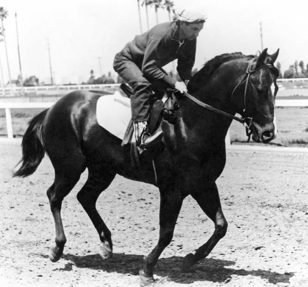 Bred and owned by June and Zelma Jeffers of Wagoner, Oklahoma, the 1955 son of Three Bars (TB) out of the Moco Burnett mare Murl L raced across America in 1957-58, dominating the 2-year-old and