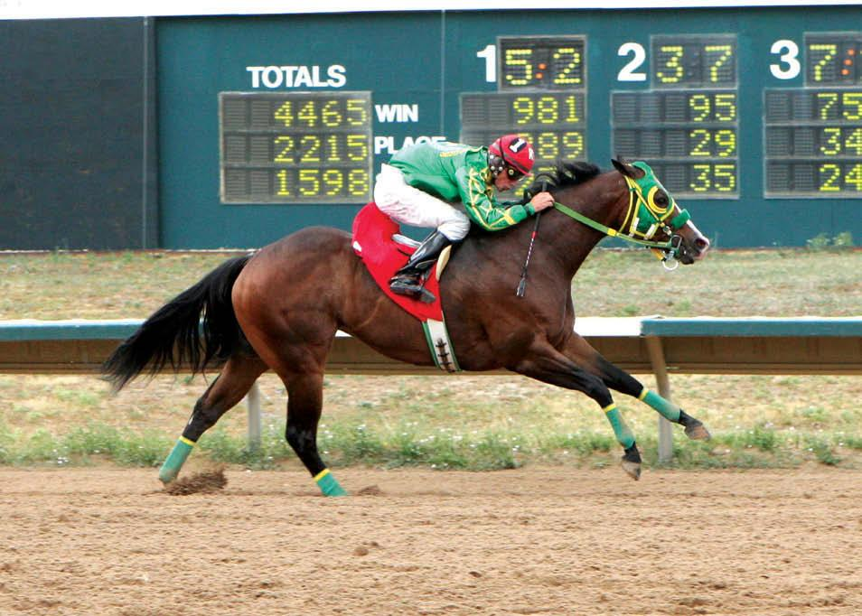 COADY PHOTOGRAPHY Dreamers Cartel wins the Merial Arapahoe Distaff Challenge. Ms Eaves is owned by the partnership of Perez Jr./O. Gomez/J. Diaz/F. Dena.