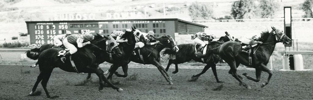 Hustling Man wins the 1962 All American Futurity. a gift for communicating with horses and a reputation for being able to talk with them, verbally and spiritually.