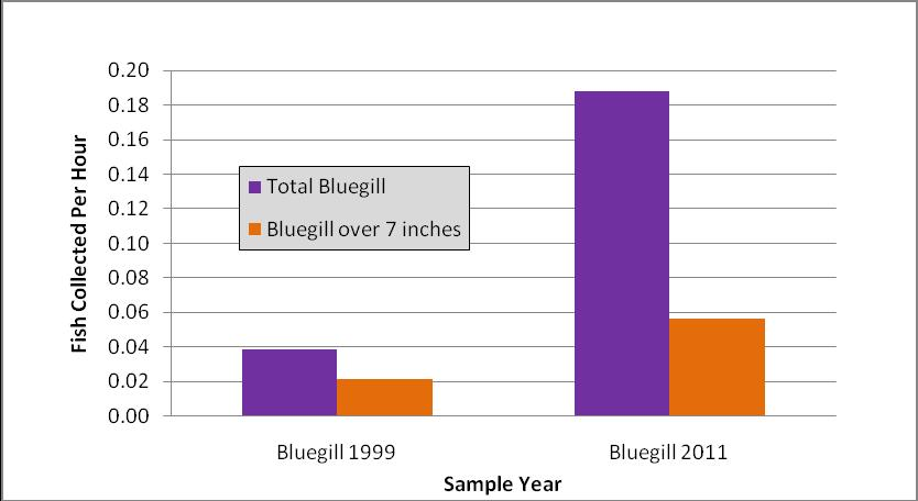Figure 2 compares catch rates between the two survey years. The catch rate for bluegill over 7 inches was 0.19 fish per hour (State guideline is.51 fish per hour).