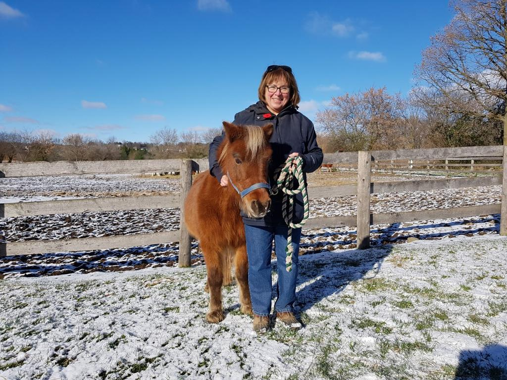 I m thrilled to be part of the Pride Stables volunteer group. Heather and Jen should be very proud of the programs they have established, and how well the horses are cared for. I know I am.