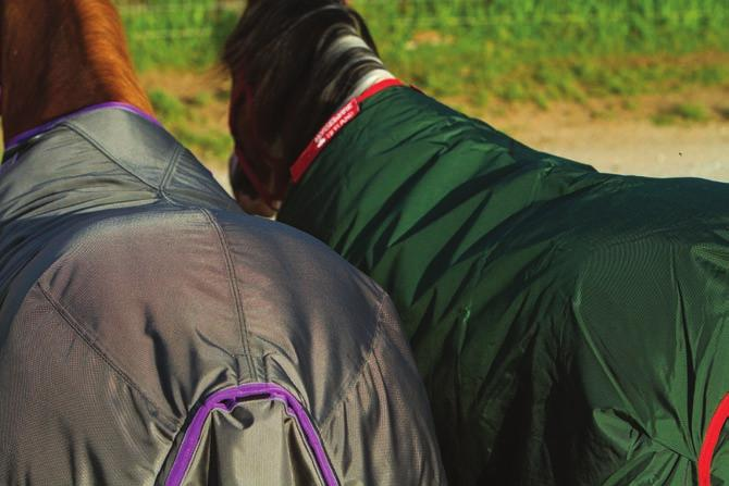 a lightweight sheet made of a highdenier material, such as Classic Equine s Windbreaker.
