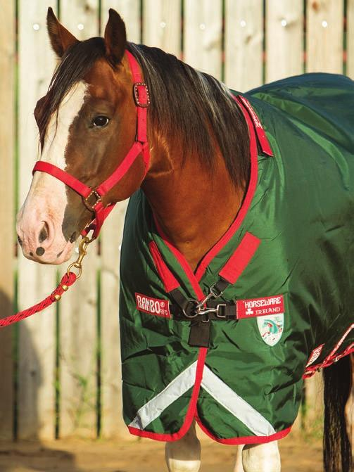 Front closures come in a variety of styles, such as Horseware s options (left), including this V-Front closure designed to give freedom of movement to graze, and those on Classic Equine turnouts