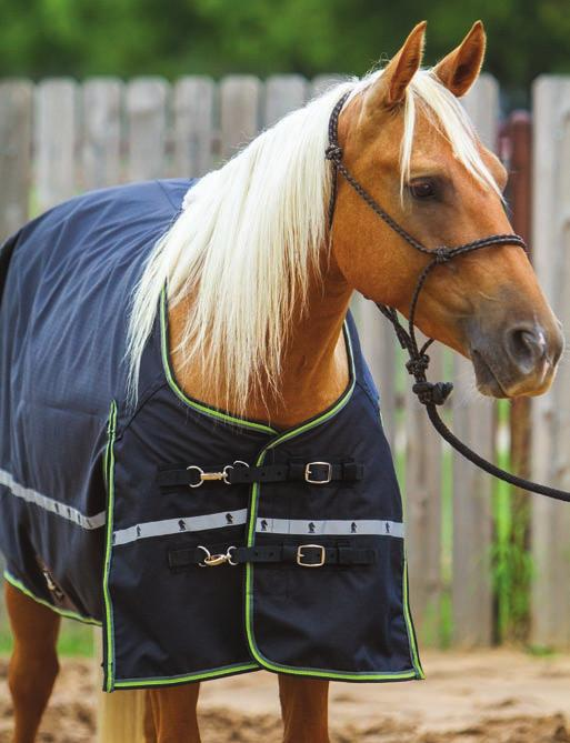 Schneiders blankets have a V-Free tented panel over the withers to reduce pressure. If you see white marks over a horse s withers, something rubbed them there and it s usually a blanket, Romask says.