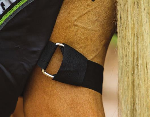 Many turnouts have removable leg and/or belly straps that are easy to wash and replace if necessary, like those on the Classic Equine Windbreaker blanket. inhibit the horse much.