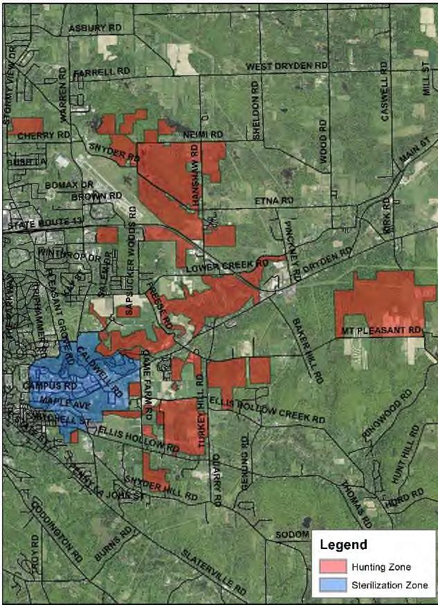 natural areas adjacent to core campus that had been open to hunting for decades. Within the hunting zone, we identified 20 disjunct hunting areas ranging in size from 14 to 190 acres.