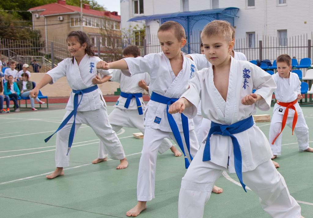 Karate is another traditional style from Japan and is the classic martial art. This practice is highly traditional and holds on to all the old school beliefs.