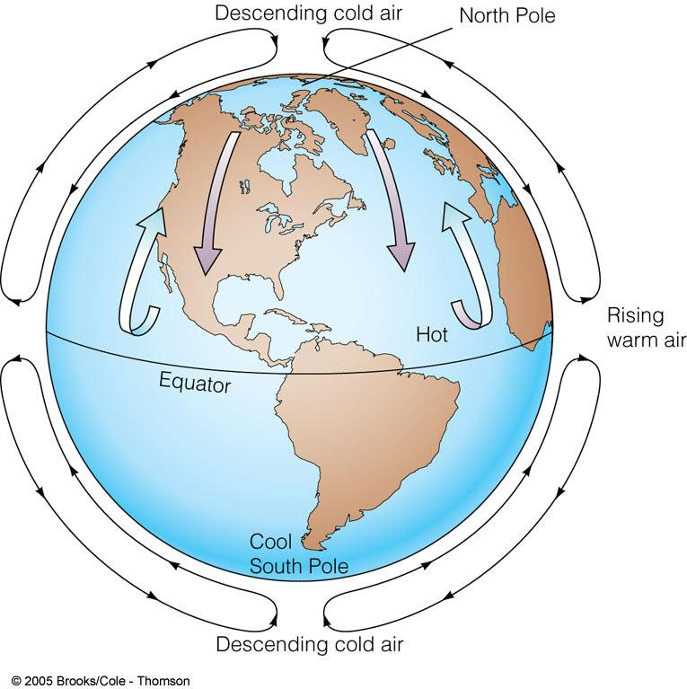 Winds on a Non-rotating Earth Would Be Simple: Warm air rises at equator Cools as it rises & water