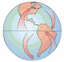 Coriolis Effect Eastward rotation of Earth on its axis 15 /hr Deflects moving objects (air, water) away from initial course Earth spins