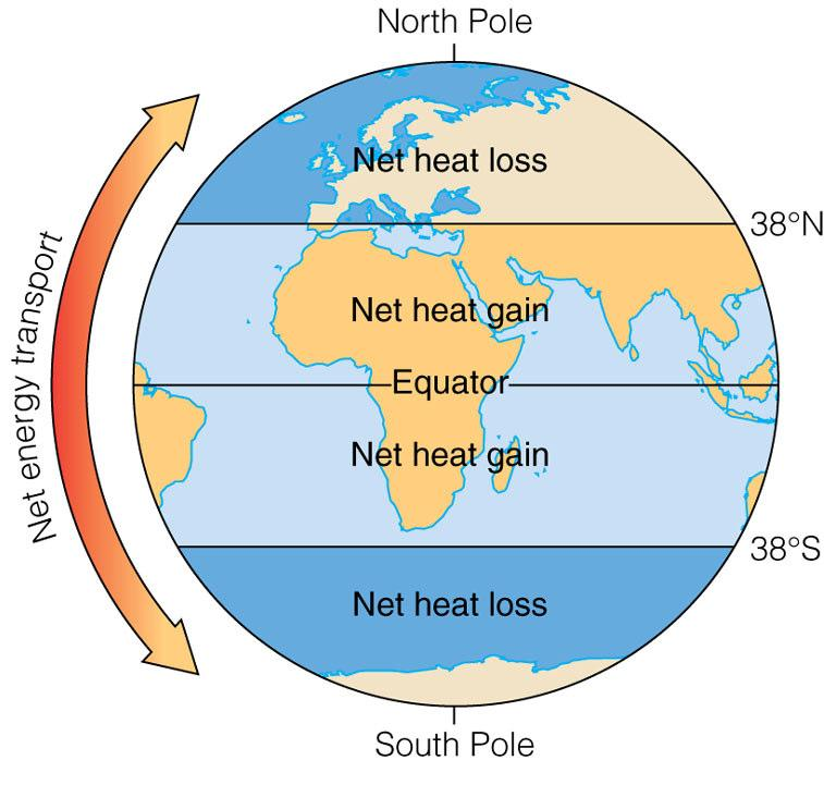 Wind & Ocean Currents distribute heat Poles: Lose more