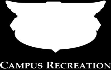 Acceptable combinations of males and females for co-rec included: 4M & 4F; 3M & 5F 5M & 3F; 4M & 4F, 4M & 3F; 3M & 4F. B. Game balls are provided by Intramural Sports. C.