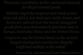 In 2012, the Secretary General of CITES stressed the direness of the rhino situation if the illegal slaughter continues.