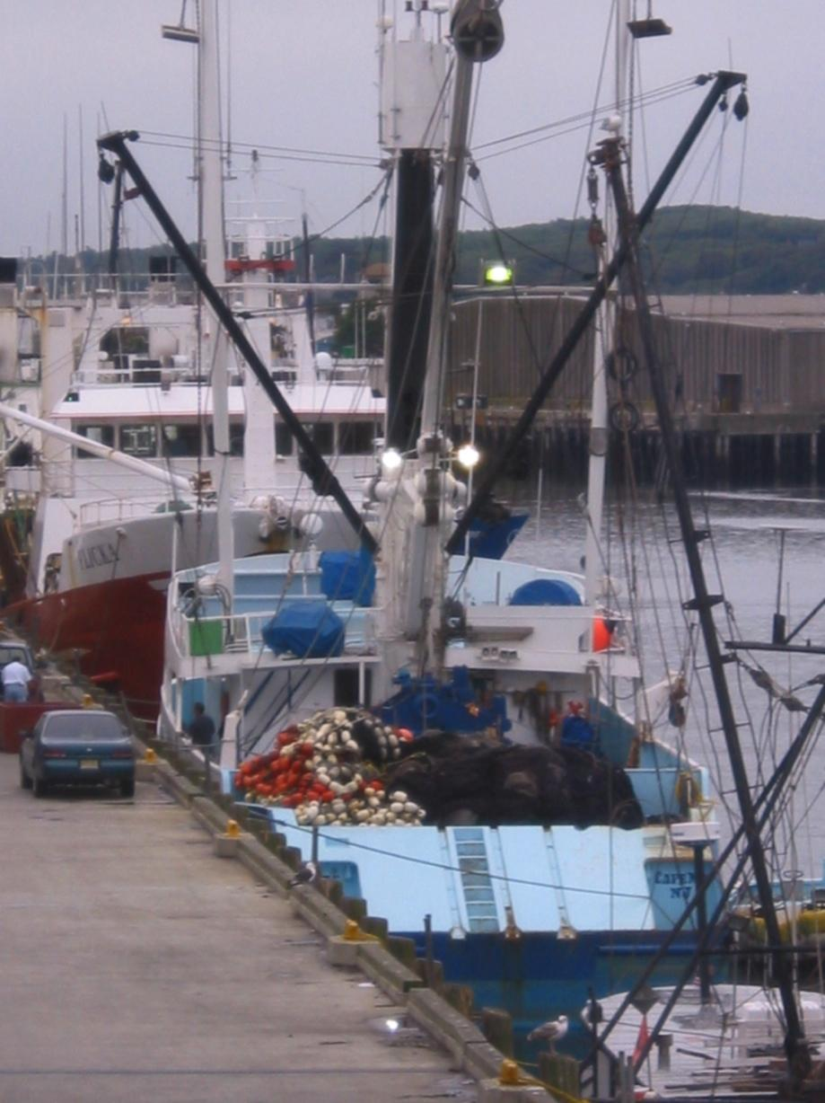 Fishing in the Northeast US Centuries of * Diversity of gear (mobile and fixed) * Trawlers * Purse seines * Gillnets * Long-