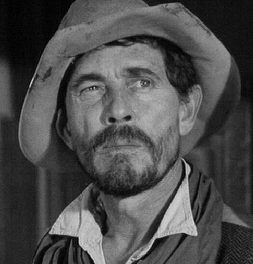 "Stage 2 ""Festus Haggen"" While our hero, Marshal Matt Dillon, is out on the trail tracking a gang of bank robbers, he finds himself riding into an ambush!"