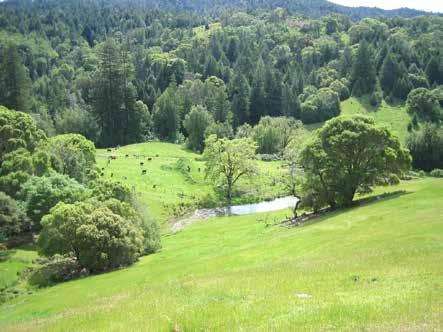 Boonville Ranch 3,200 Acres in Mendocino County Abundant wildlife: Wild boar, blacktail deer, turkeys, bear, grouse, etc. Meadows, pastures & forested hills await.