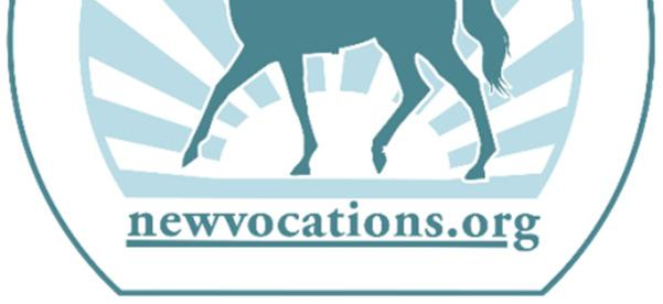 September 8, 2019 Open Divisions; Jumper, Pleasure, Western Dressage and Dressage Championships