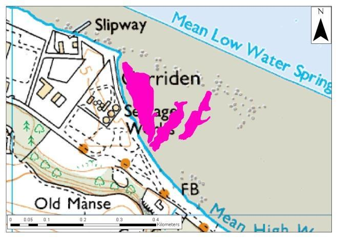 seagrass beds observed - Carriden Bay and Brucehaven (Figure 30). It must be noted that these figures have been re-projected from the original report as no original spatial data was available.