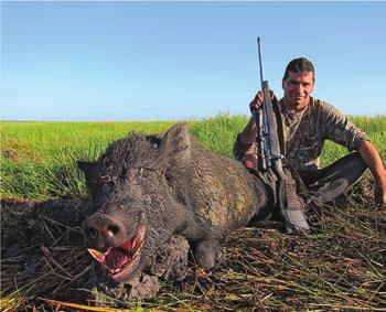 A boar I took out with the 30/06 on the lush floodplains as we where making our ways to the hunting grounds early one morning.