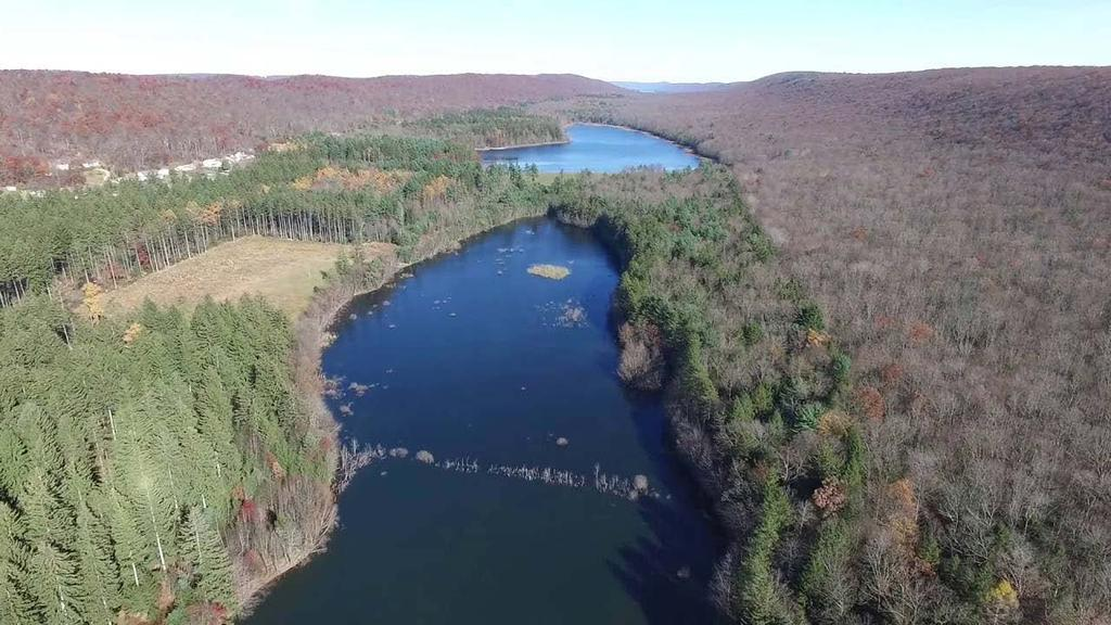 Upper/Lower Owl Creek Reservoir Schuylkill County 2018 Largemouth Bass Survey Upper Owl Creek Reservoir and Lower Owl Creek Reservoir are 67-acre and 26-acre impoundments, respectively, created by