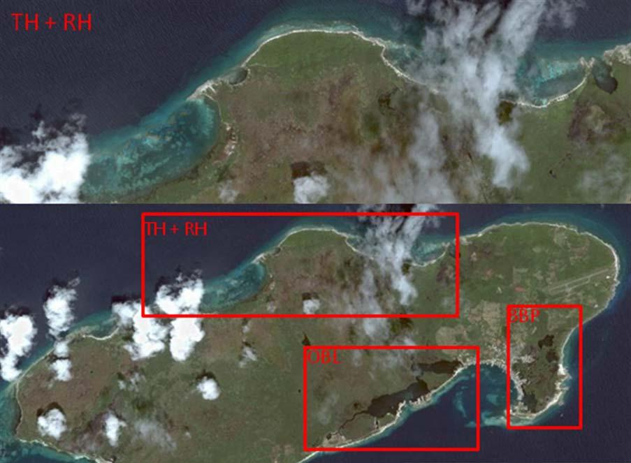 Harbour are relatively untouched, especially Turtle harbour which is protected by local laws and access is prohibited unless for sanctioned research.