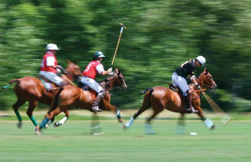 Page 4 The 20 Goal Molina Cup 2017 Grand Champions Polo Club 6 teams 20 Goal - Bracket play and