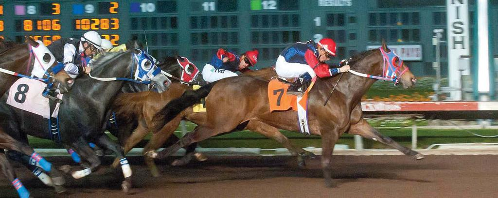 Rylees Winter Llate-charging runner rylees boy didn t even need the extra 40 yards to make his winning move in the 400-yard Los Alamitos Winter Championship (G1).