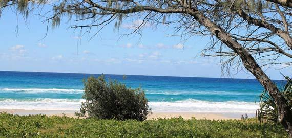 The Gold Coast Council, in partnership with Griffith University's Centre for Coastal Management, actively seeks to better understand the ecological and physical processes that shape the