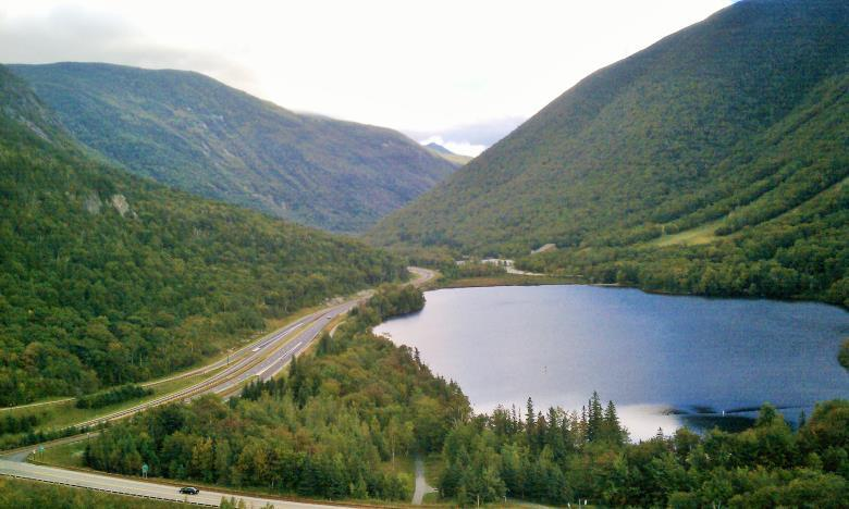 Associated Species: This habitat may support characteristic coldwater fish species (exclusive of lake trout), including rainbow smelt, brook trout, brown trout, landlocked Atlantic salmon, burbot
