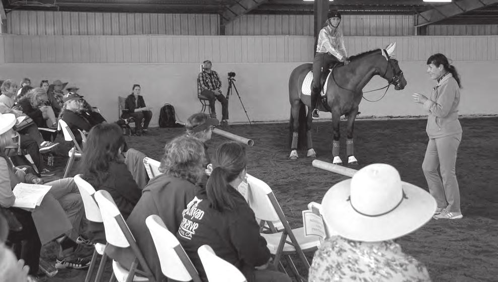 A big thank-you to CDS for sponsoring this educational series for AA s and to my East Bay Chapter for selecting me to attend. I took my Trakehner gelding Tanzartig Ps whom I competed at I-1 last year.