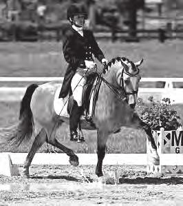 USEF USDF FEI USEF USDF A Well Worth Road Trip For Emily Lasher By Yellow Horse Marketing for the National Dressage Pony Cup A few puddles weren t going to keep California s Emily Lasher and The Hot