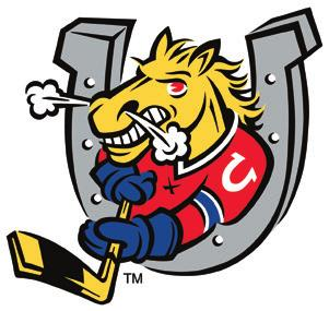 Barrie Colts Barrie Molson Centre 555 Bayview Drive, Barrie, Ontario L4N 8Y Phone: 75.7.6587 Fax: 75.7.979 email: operations@barriecolts.