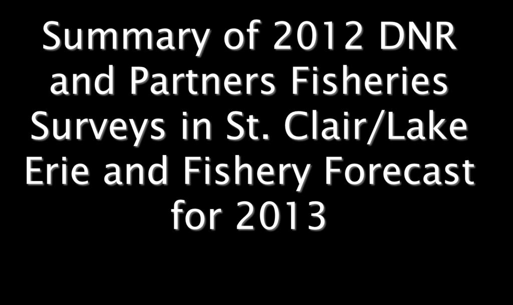 Summary of 2012 DNR and Partners Fisheries Surveys in St.