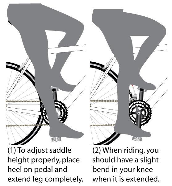 3 - Assembly: Step 6 - Attach Additional Reflectors (2) Adjust Seatpost Height (Recommended) (See Figure 12). Exact saddle height is largely a matter of personal preference.